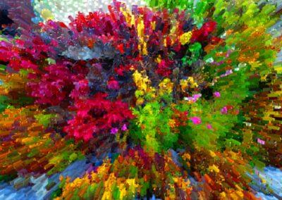 artistic-photography-by-jonnyjelinek_colorfulflowerexplosion