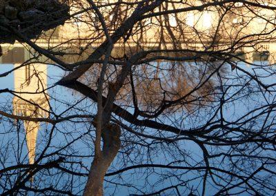 mindful-photography_by-jonnyjelinek_churchandtreereflection-vienna