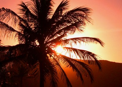 artistic-photography-by-jonnyjelinek_travel-beachpalmtreeatsunset